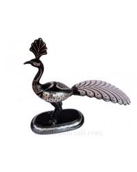 Peacock 482